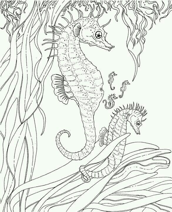 ocean theme coloring pages - photo#40