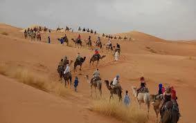 www.marrakechrougehostels.com/overnight-trips/ www.marrakechrouge.com/excursions/ www.whenevermarrakech.com/excursions/ www.rainbowmarrakech.com/excursions/ www.thistimeinmarrakech.com/excursions/