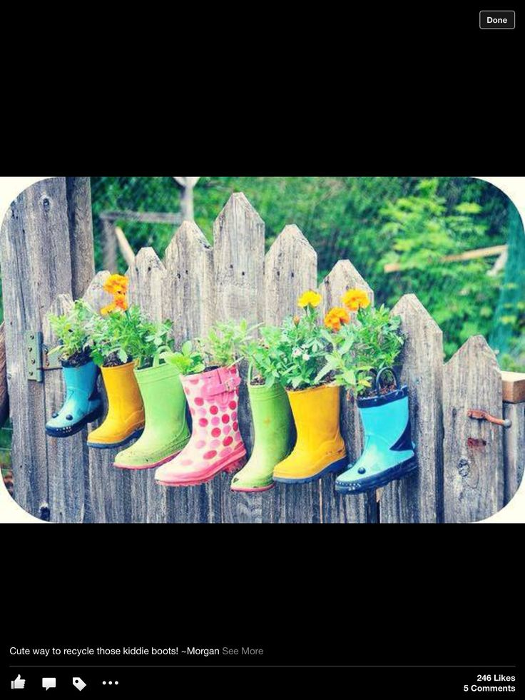 My favourite way to plant up with old shoes. These wellington boots are a colourful delight
