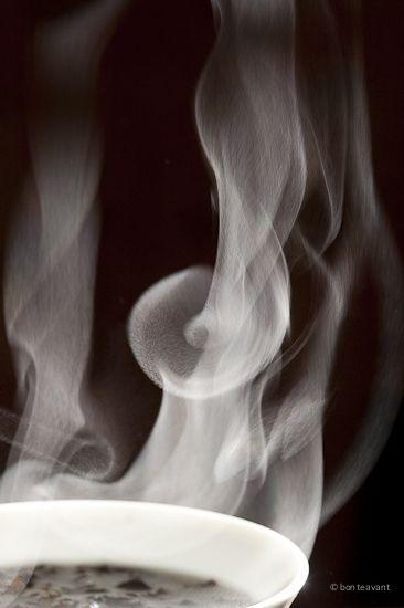 Steam Teas, Steam Captive, Teas Steam