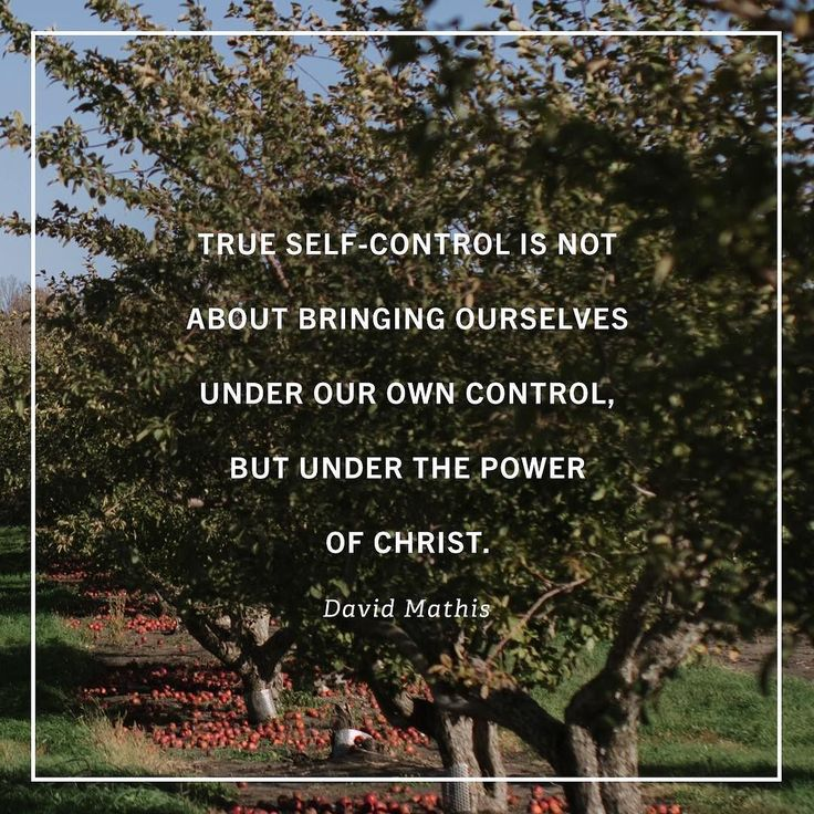 """Ultimately our controlling ourselves is about being controlled by Christ. When 'the love of Christ controls us' (2 Corinthians 5:14) when we embrace the truth that he is our sovereign and God has 'left nothing outside his control' (Hebrews 2:8) we can bask in the freedom that we need not muster our own strength to exercise self-control but we can find strength in the strength of another. In the person of Jesus 'the grace of God has appeared . . . training us'  not just 'to renounce…"
