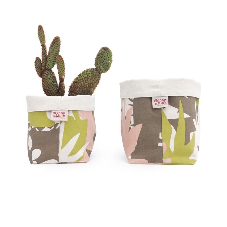 Soft Buckets by Skinny laMinx are great for jazzing up your succulent collection. Featured is the new Miami colourway from the 'Roof Garden' collection