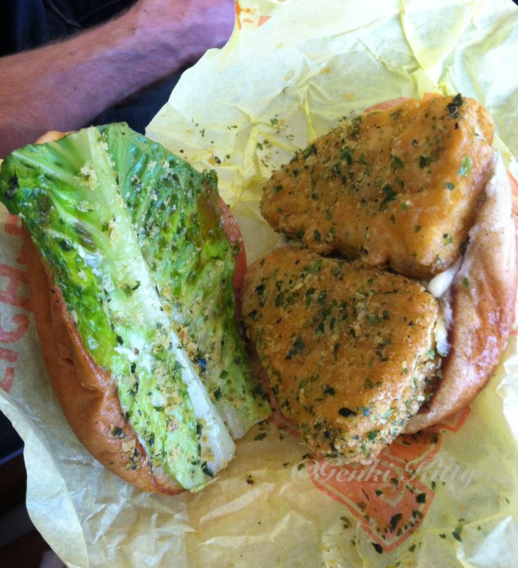 Fishless Sandwich from Earth Burger in San Antonio, Texas Vegan