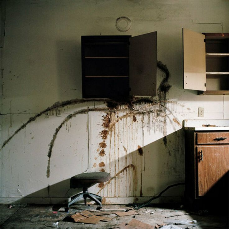 Anna Beeke, Brooklyn, N.Y. Beeke's project, Amsterdam, New York, documents a town in decline, exploring both living and dead spaces, and how...