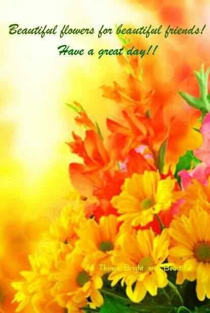 Good Morning Orange Flowers : Good morning sunshine pinterest