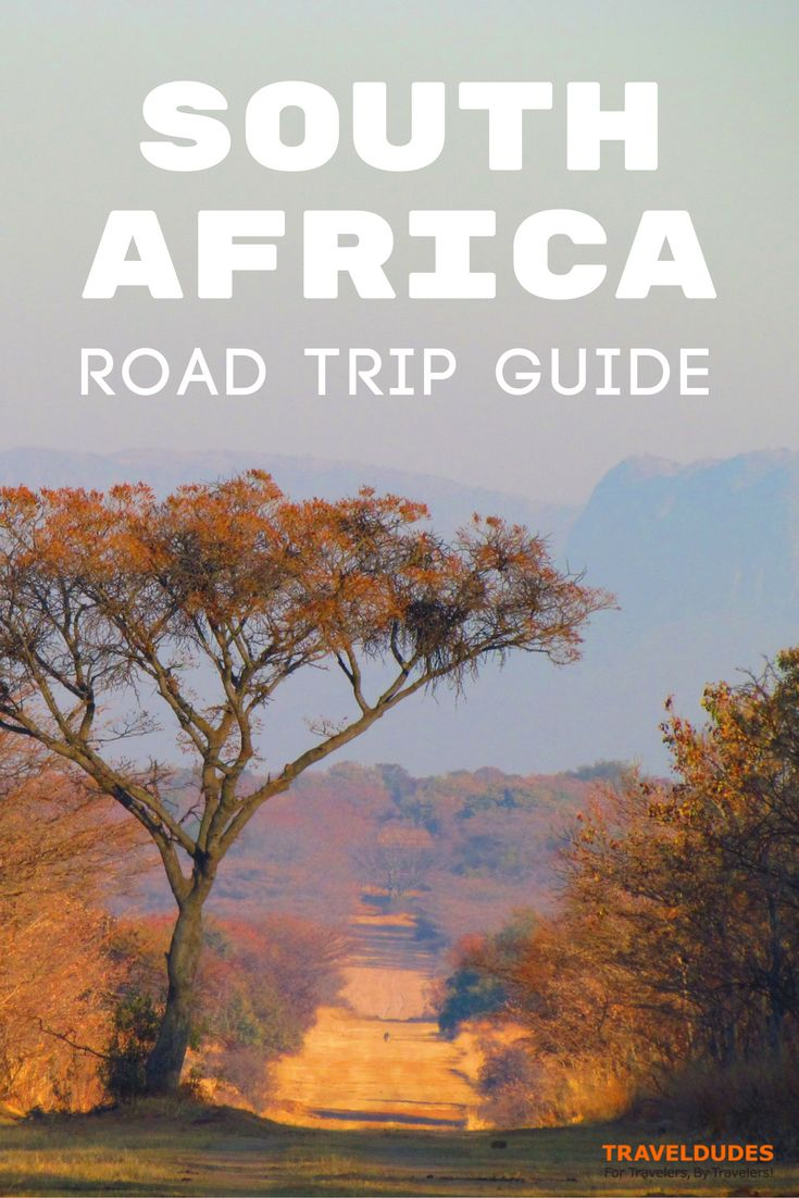 4 of the best road trip routes in South Africa including itineraries for the Garden Route, the Midlands, and the East and West Coast. Travel tips for your trip to Africa. | Blog by Travel Dudes: Community for Travelers, by Travelers!