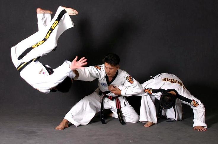 There are three primary principles in Hapkido. The first is Yu, the theory of flowing water. You should never meet the force head on. Instead, you should divert the flow of the attack with softness and disperse it. The secondly theory is Won, the theory of the circle. Circular movements make it possible to use the attacker's force against them. The last principle is Wha, the theory of harmony. The ability to harmonize with the opponents force and make that force your own.