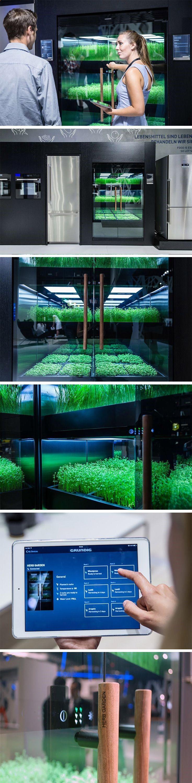 9c168cb9806e5f428d876d1321f7534e Frais De Fabriquer Aquarium Concept