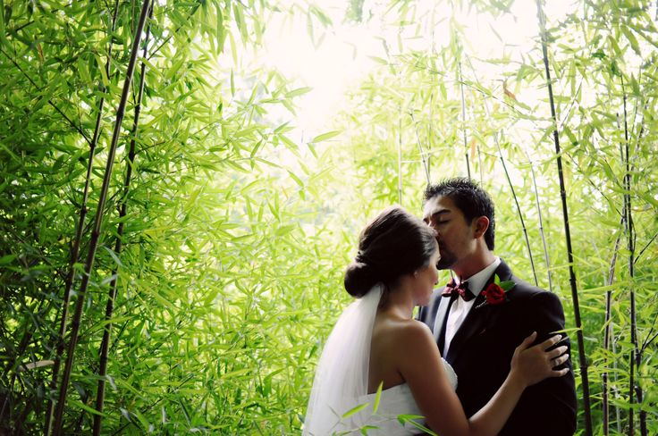 Three Leaf Photography | Abbotsford Chilliwack Langley Wedding Photographers - Bride and groom standing in bamboo