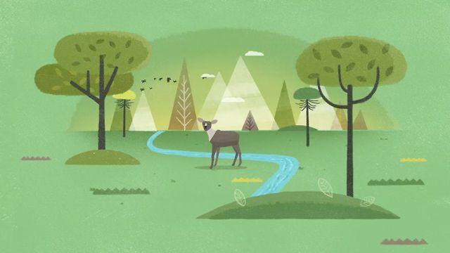 Client: Gobierno de Chile, Agency: Prolam Y&R, Design & Animation: Believe