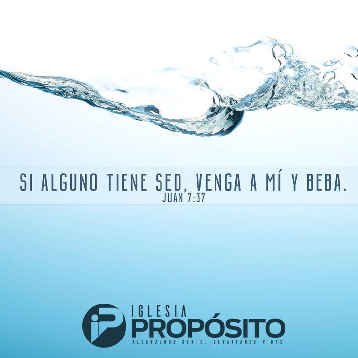 Debemos aprender a saciar nuestra sed con las cosas correctas. ¡Si alguno tiene sed, venga a mi y beba! Juan 7:37