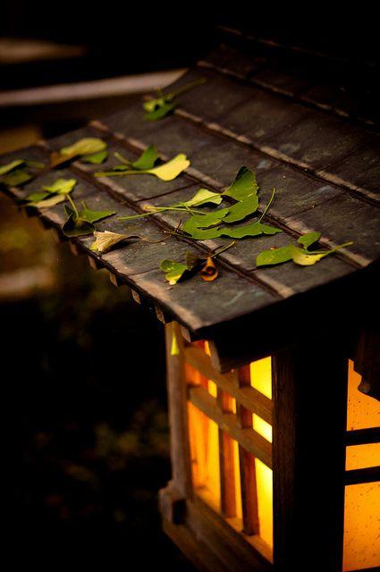 Japanese lantern #japan #garden