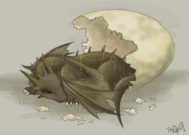 aww baby dragon hatchling