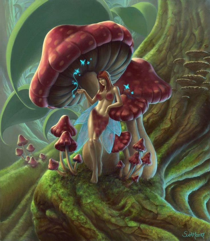 17+ best images about Fairies an magical beings on ...  17+ best images...