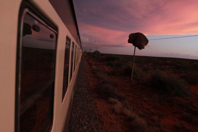 SULLO SHONGOLOLO EXPRESS, DALLA NAMIBIA A CAPE TOWN – Un safari in treno: la nuova linea transafricana collega Windhoek, la capitale della Namibia, a Cape Town, in Sudafrica. In mezzo, 4.317 di dune, orizzonti infuocati, parchi nazionali, miniere di diamanti… E incontri ravvicinati con tanti, tanti animali. Info: shongololo.com