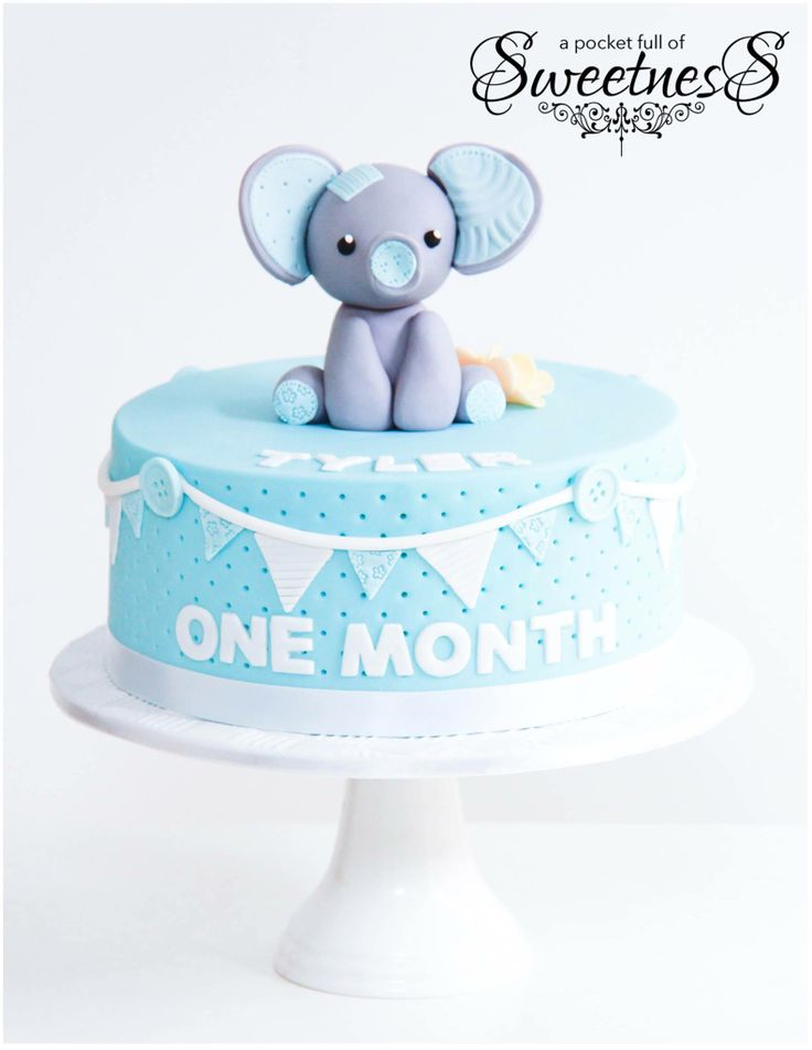 Baby Blue Elephant Themed One Month Birthday Cake Created By A Pocket Full Of Sweetness