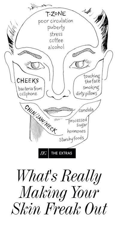 Exploring The Face Map #Beauty #Musely #Tip