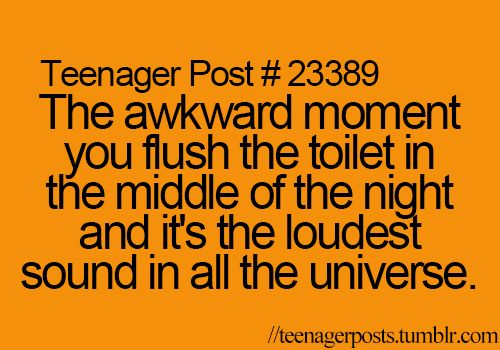 That awkward moment when you flush the toilet in the middle of the night and it's the loudest sound in all the universe.