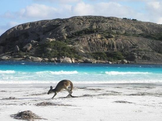 Lucky Bay......Australia