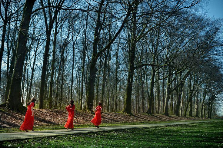 3 rode bruidsmeisjes in een blauw en groen landschap.