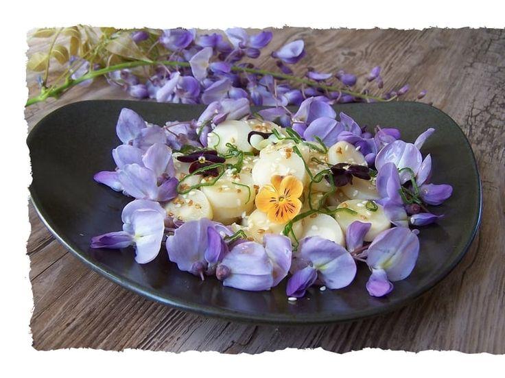 1000 id es propos de fleur de palmier sur pinterest for Entretien salade jardin