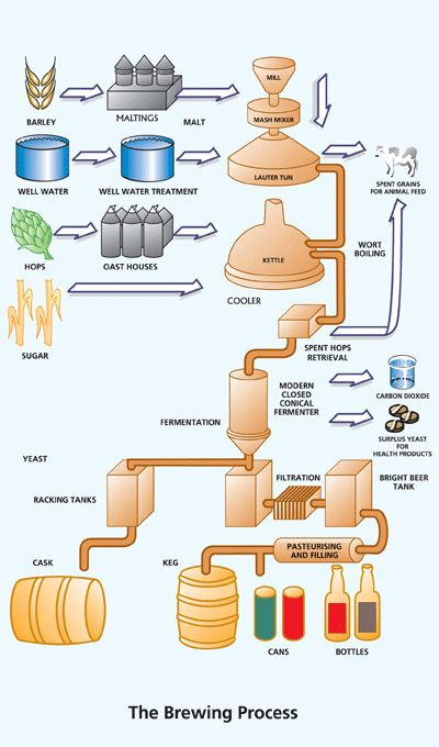 Process flow sheets: Beer production process with flow chart
