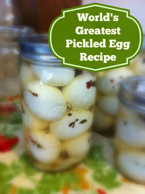 World's Greatest Pickled Egg Recipe - Feather and Scale Farm