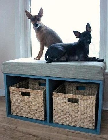 6 DIY Window Perches Your Pet Will Love