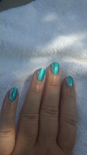 Blue Macaw ( Parrot Polishes)