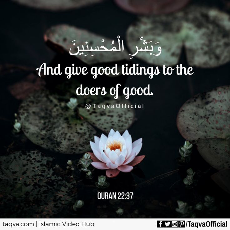 """And give good tidings to the doers of #good."" #Quran 22:37 ✨ #islam #goodvibes #goodnews #gladtidings #goodtidings #islamic #reminder #muslim #muslimah #muslims #ummah #dogood #begood #doright #righteousness #righteous #right #goodness #islamicquote #islamicquotes #religion #faith #iman #tawakkal #sunnah #quranquotes #ayah #taqva"