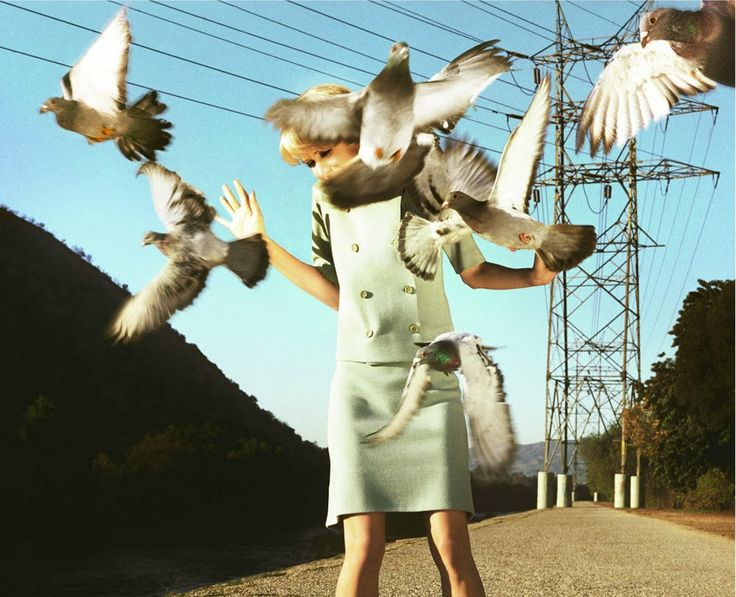 Composition: Context, I chose this picture because the photo is telling a short story with the context of birds flying in the woman's face.