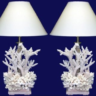 Coral lamps Special order only Tropical Accents & Gifts Exuma, Bahamas