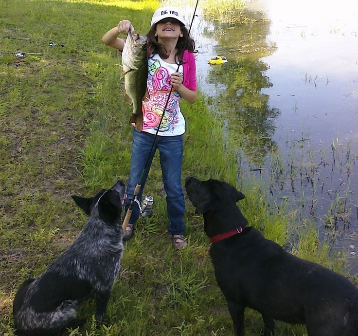 Nice catch...now keep it away from the dogs waiting to eat it when you aren't looking!  lol!