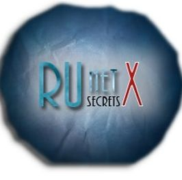 Как заработать в интернете с помощью RuNetSecretsX
