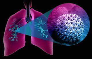 Allergy, types; spring allergies; fall allergies; allergy, mood; rhinitis; allergy, symptoms; allergy; allergic rhinitis; allergy, pollen; hay fever;Asthma