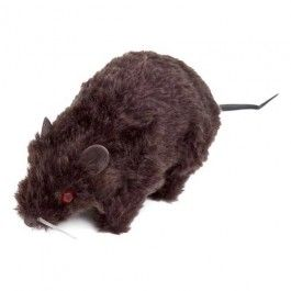 Halloween Evil Rat Something to scare your guests.  #poundlandhalloween