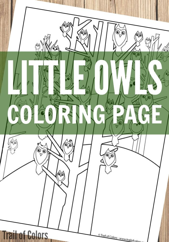 Owls Coloring Page For Grown Ups And Kids Adult Coloring