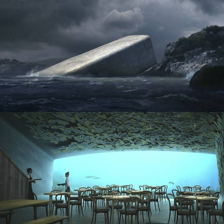 Under: Europes First Underwater Restaurant Looks Like A Rock From Outside But Only Until You Step Inside  #ecofriendly #climate #efficient #homes #ActOnClimate #Renewables #environment #landscape #cleanenergy #floatingcity #ocean #cruise #island #city #realestate #home #water #pacific #blogger #restaurant #underwater #kimkardashian #realestate