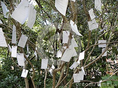 Sheets of paper containings the desires of tourists attached to the branches of a tree.