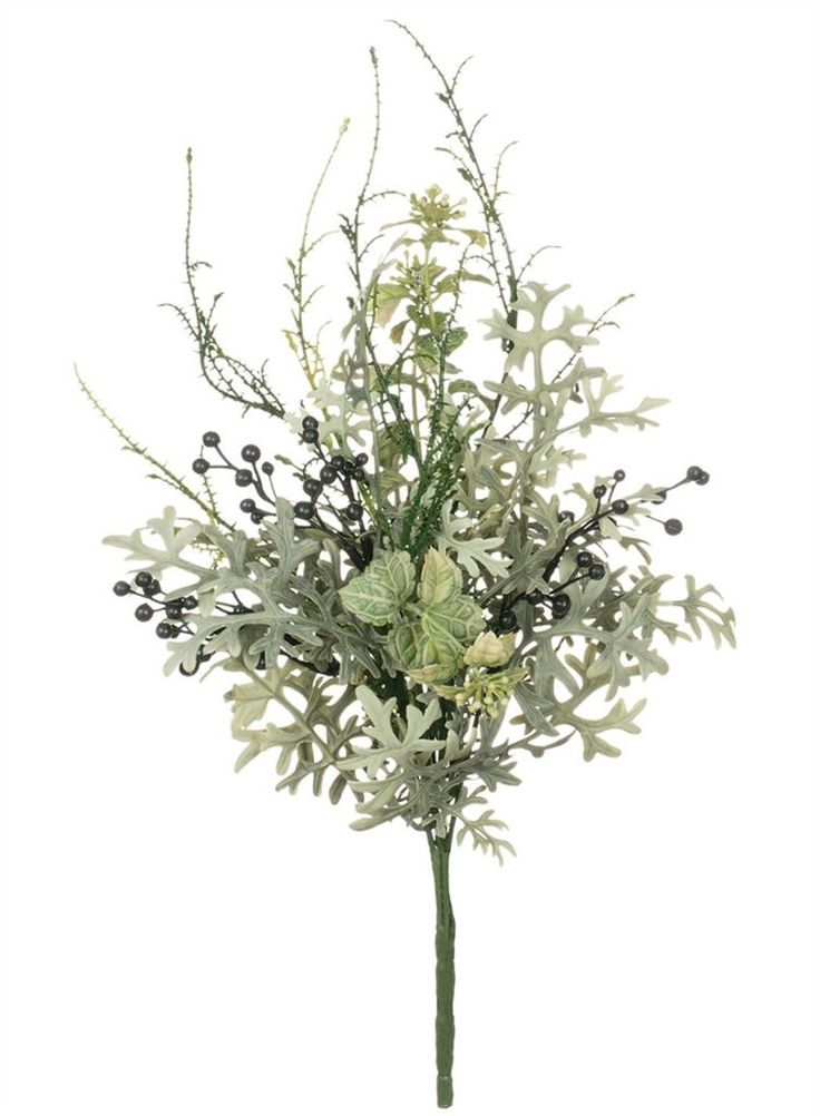 """Artificial Dusty Miller and Boxwood Pick in Grey Green<br>13"""" Tall"""