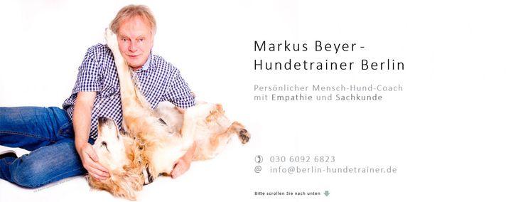 Hundetrainer Berlin: Hundeschule Berlin - zertifizierter Hundetrainer Markus Beyer begleitet Sie und Ihren Hund in Berlin mit Sachkunde und Empathie im persönlichen Training.