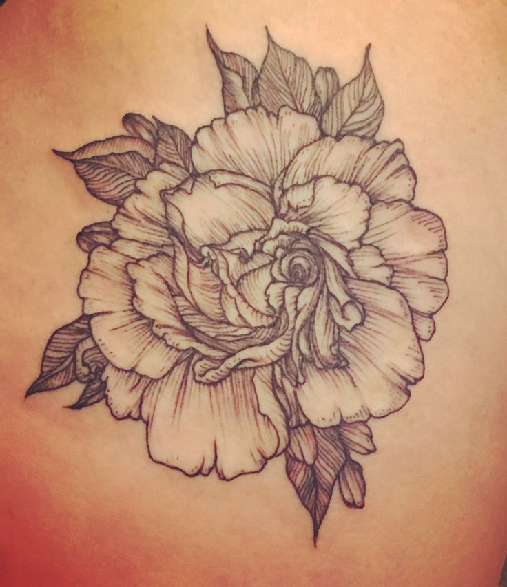 Image result for gardenia outline hip tattoo