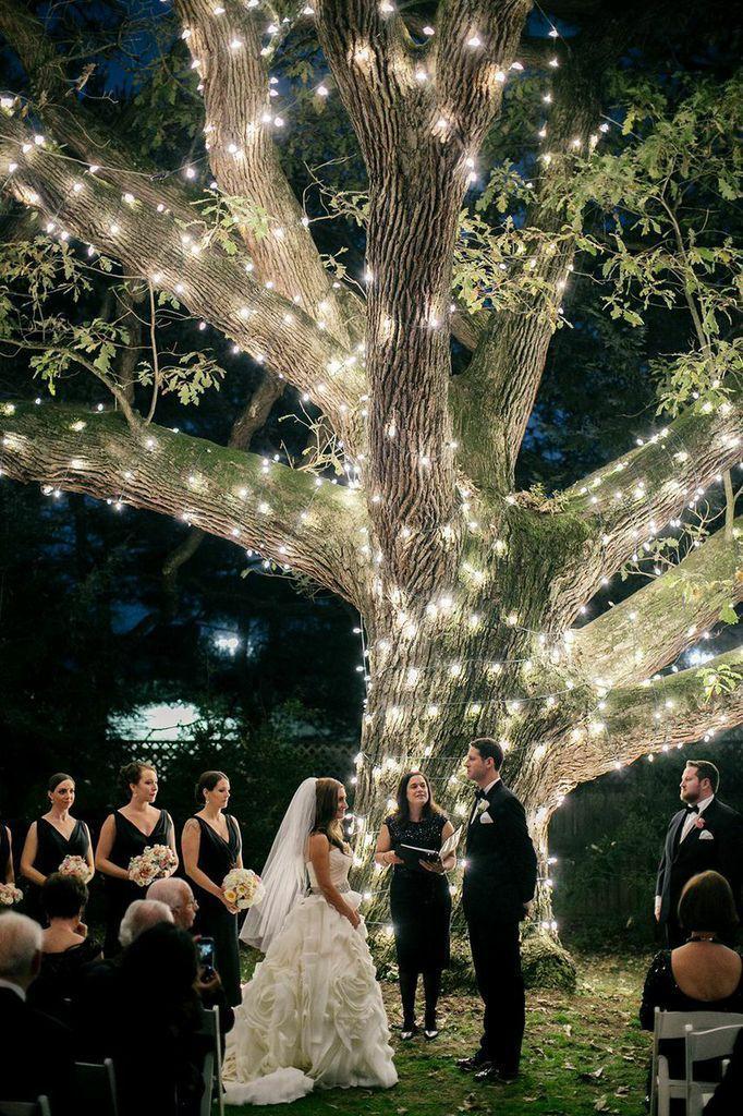 Moonlight Pennsylvania Wedding Under a Sparkling Tree at Aldie Mansion from Emily Wren. - wedding ceremony