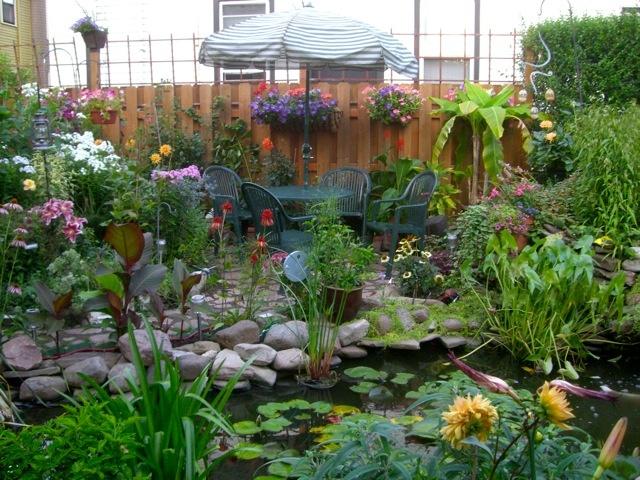 Ideas For A Tropical Garden In Zone 5 Small But Beautiful Gardens Backyard