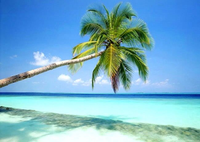 Praia! Maceió - AL Brasil