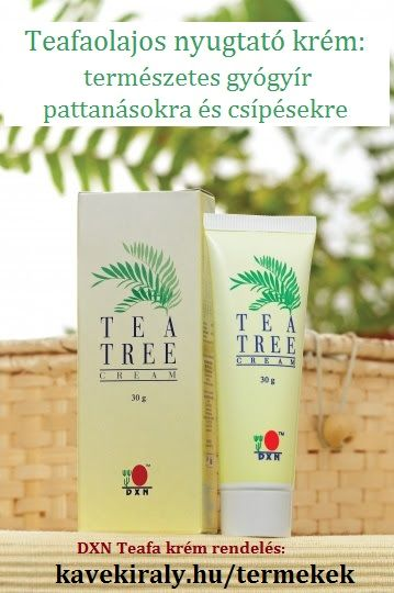 DXN Tea Tree Cream rendelés: http://kavekiraly.hu/termekek#katnev_3