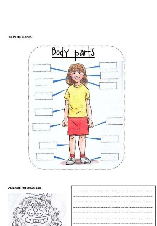 Corps humain Anatomique Système Musculaire Aquarelle jet d