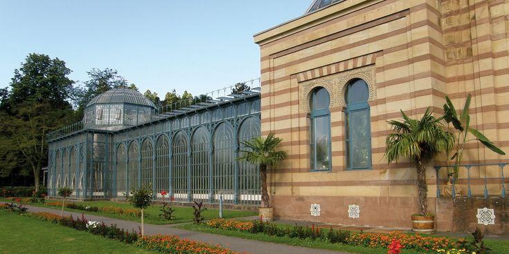 DIe Wilhelma Stuttgart ist eine einmalige Kombination aus Zoo, botanischem Garten und historischem Park und eine besondere Sehenswürdigkeit in Stuttgart. Tickets sind online buchbar!