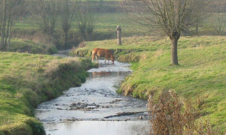 De Gulp near Slenaken, Zuid-Limburg, Netherlands
