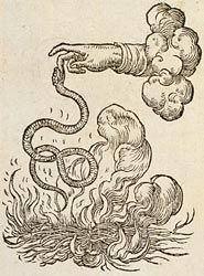 a hand from a cloud with its second finger being bitten (or held to) by a small snake.  It is holding the snake over an open fire (with kindling wood)